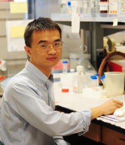 UC Davis Researchers: Key Discovery Involving Omega-3 Fatty Acids and Cancer